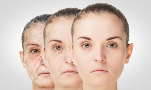 Обнаружен новый способ побороть старение
