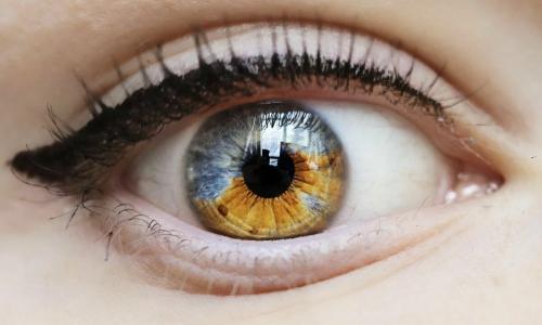 Цвет глаз и здоровье: что говорят ученые